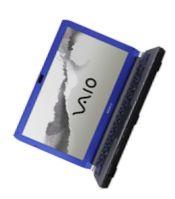 Ноутбук Sony VAIO VGN-TT290NCL